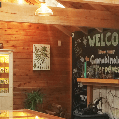 chimacum cannabis dispensary