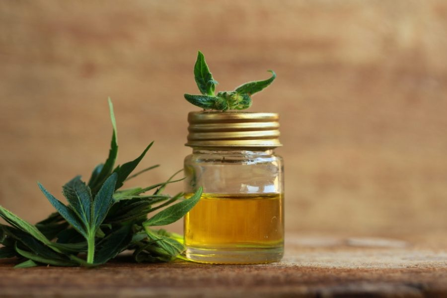 Our Top 10 List of CBD Brands