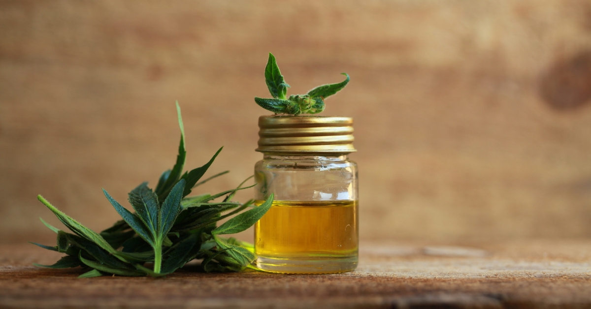 Best CBD brands right now