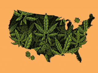 Build National Awareness for your Cannabis Brand with a Hemp-Derived CBD Line