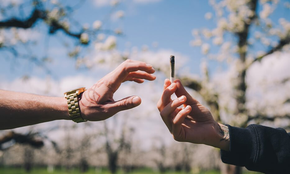 cannabis-consumer-report-2021