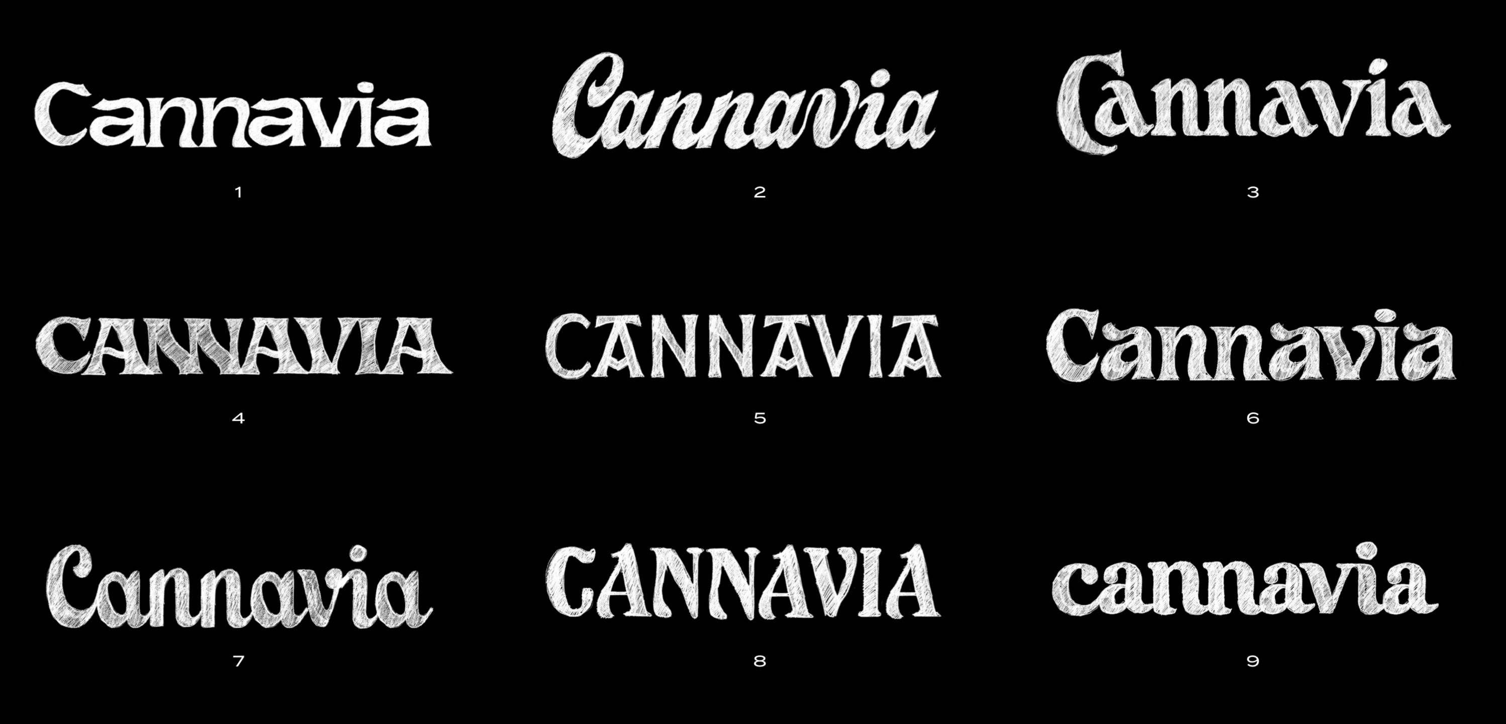 cannavia logo process min