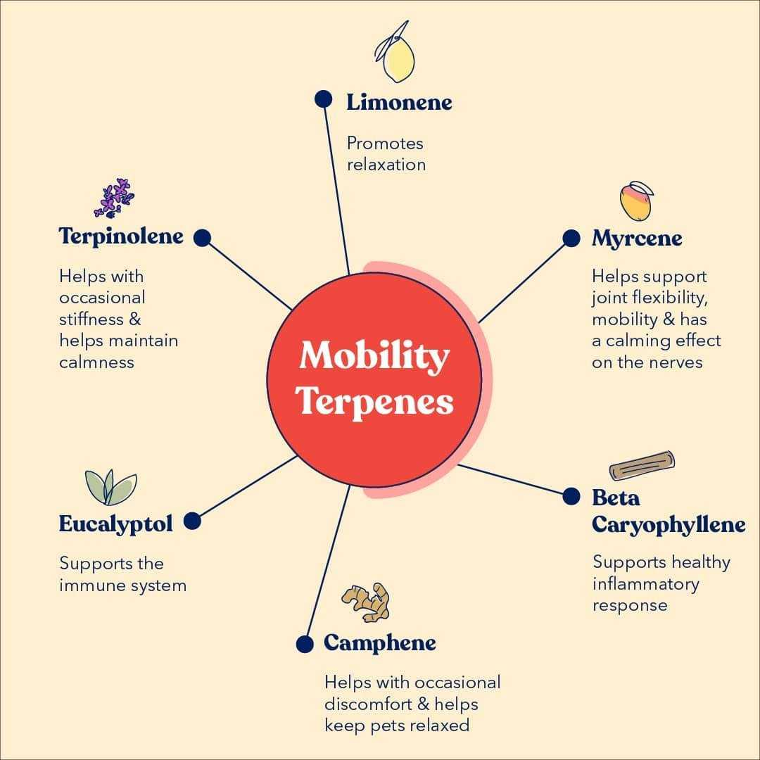 Mobility Terpenes