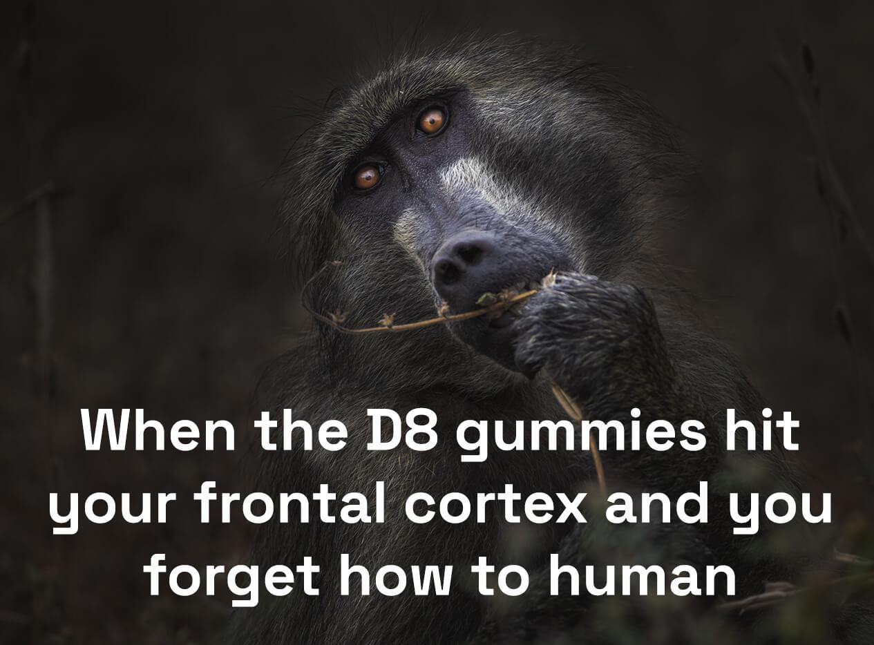 D8 THC gummies